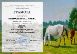 113 Митрощенкова Мария вК.д